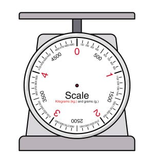 scale 2
